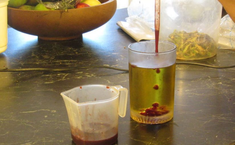 Molecular Gastronomy (simple and cheap)